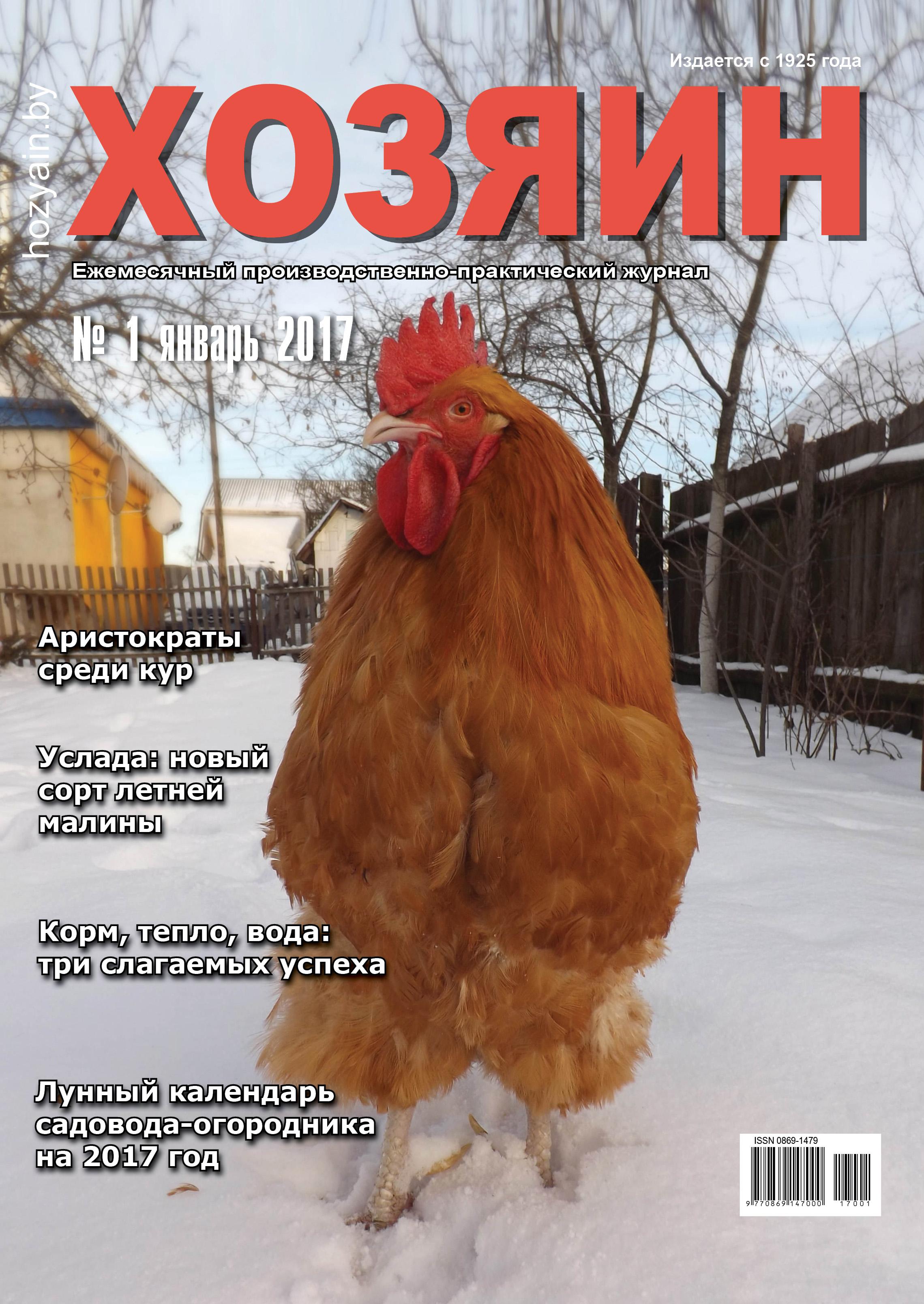 """январский """"Хозяин"""" за 2017 год"""