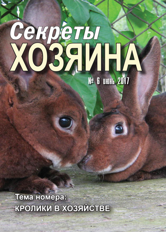 """июньская обложка """"Секретов ХОЗЯИНА"""""""