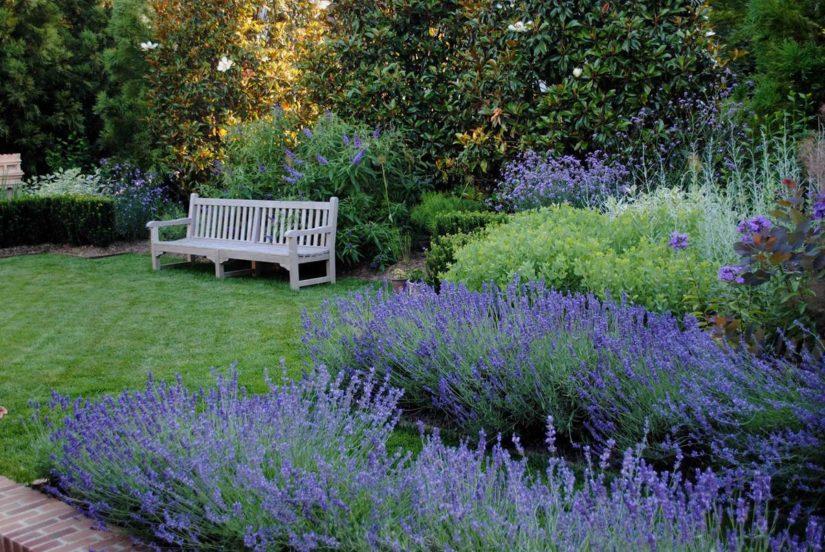 голубой сад