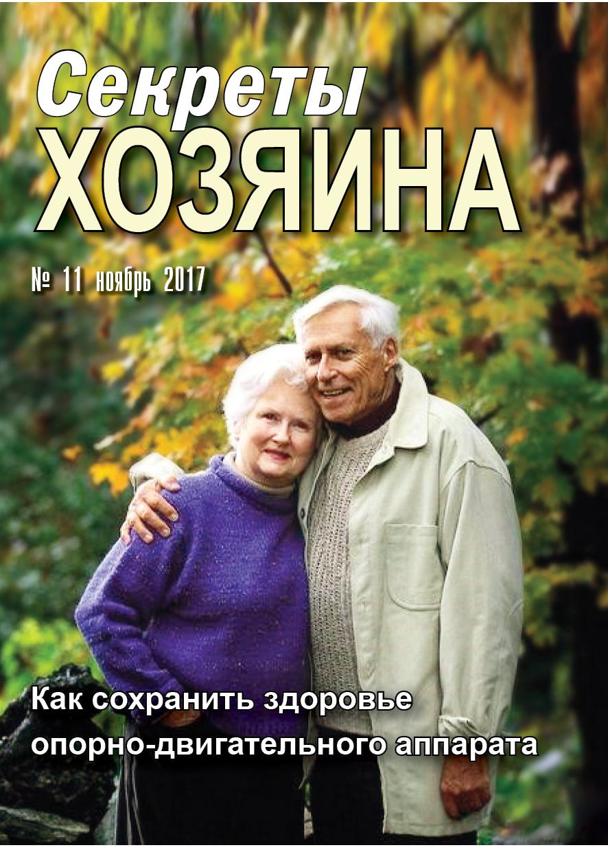 """ноябрьская обложка """"Секретов хозяина"""""""