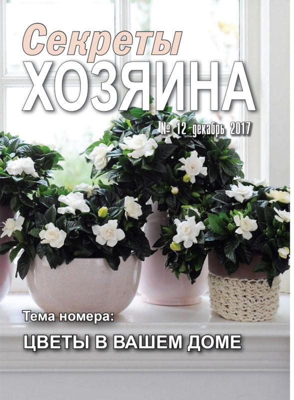 """декабрьская обложка """"Секретов ХОЗЯИНА"""""""